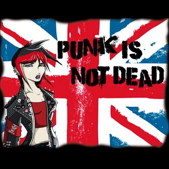 Bluza kangurka  PUNK IS NOT DEAD 02